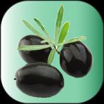 Olive-Noire