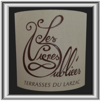 vignes-oubliees-article