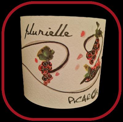 Plurielle 2015, la cuvée du domaine Picaros pour notre blog pour le vin