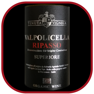 Valpolicella Ripasso 2016, le vin du domaine Tenuta Vinega pour notre blog sur le vin