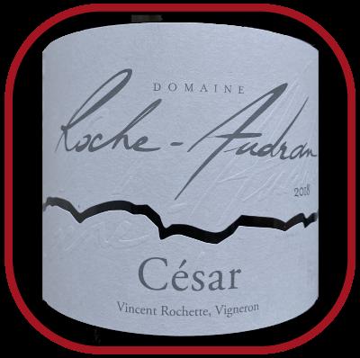 César 2018, le vin du domaine Roche Audran pour notre blog sur le vin